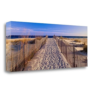 Tangletown Fine Art 'Pathway to the Beach' Photographic Print on Wrapped Canvas; 14'' H x 34'' W