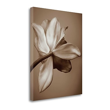 Tangletown Fine Art 'Moonlight Tulip' Photographic Print on Wrapped Canvas; 40'' H x 32'' W