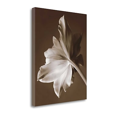 Tangletown Fine Art 'Moonglow Tulip' Photographic Print on Wrapped Canvas; 33'' H x 27'' W