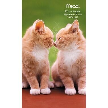 Mead® – Agenda de poche mensuel pour 2 ans 2018-2019, motif de chatons, bilingue