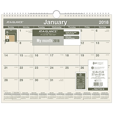 At-A-Glance® 2018 Monthly Recycled Wall Calendar, 15