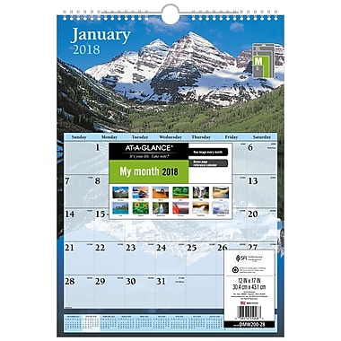 At-A-Glance® 2018 Monthly Wall Calendar, 12