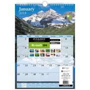 At-A-Glance® – Calendrier mural mensuel 2018, 12 po x 17 po, motifs tendance, anglais