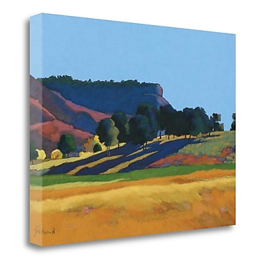 Tangletown Fine Art 'Blue Skies' Print on Wrapped Canvas; 24'' H x 32'' W