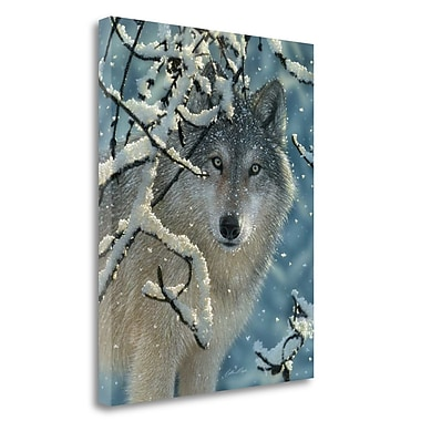 Tangletown Fine Art 'Broken Silence' Photographic Print on Wrapped Canvas; 26'' H x 20'' W