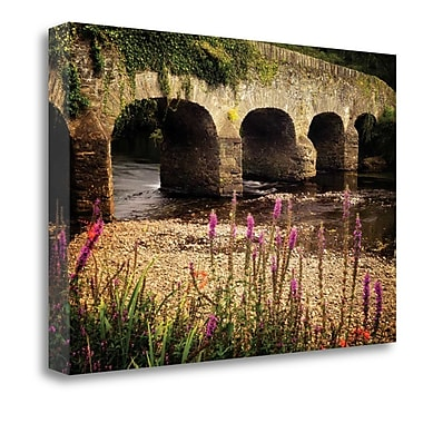 Tangletown Fine Art 'Arched Bridge I' Photographic Print on Wrapped Canvas; 16'' H x 24'' W
