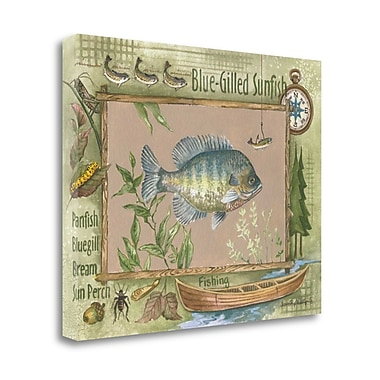 Tangletown Fine Art 'Blue-Gilled Sunfish' Graphic Art Print on Wrapped Canvas; 22'' H x 28'' W