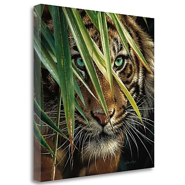 Tangletown Fine Art 'Tiger Eyes' Photographic Print on Wrapped Canvas; 30'' H x 30'' W