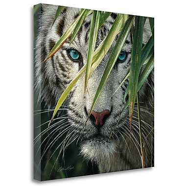 Tangletown Fine Art 'Watching and Waiting' Photographic Print on Wrapped Canvas; 25'' H x 25'' W