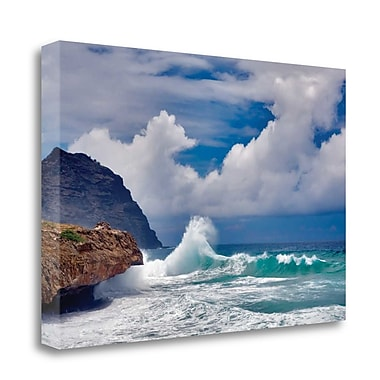 Tangletown Fine Art 'Wave Hello' Photographic Print on Wrapped Canvas; 24'' H x 37'' W