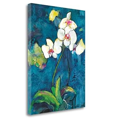 Tangletown Fine Art 'Phalaenopsis II' Print on Wrapped Canvas; 29'' H x 21'' W