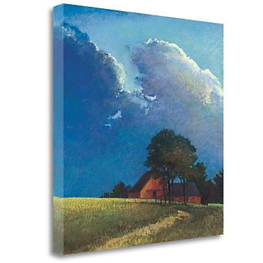 Tangletown Fine Art 'Summer Storm' Graphic Art Print on Wrapped Canvas; 35'' H x 35'' W