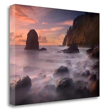 Tangletown Fine Art 'Timeless Shore' Photographic Print on Wrapped Canvas; 24'' H x 32'' W