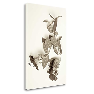 Tangletown Fine Art 'Garden Bloom - 5' Graphic Art Print on Wrapped Canvas; 28'' H x 19'' W