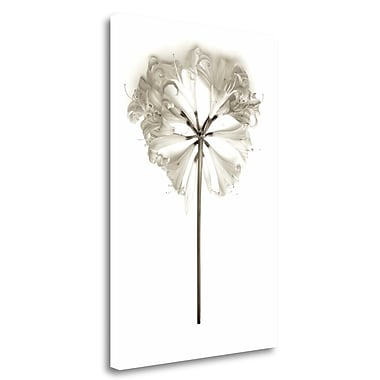 Tangletown Fine Art 'Garden Bloom - 11' Graphic Art Print on Wrapped Canvas; 31'' H x 20'' W