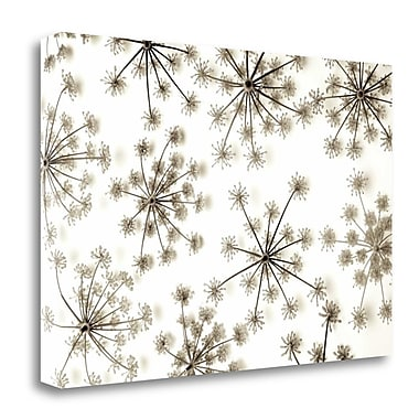 Tangletown Fine Art 'Garden Bloom - 20' Graphic Art Print on Wrapped Canvas; 26'' H x 40'' W
