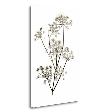 Tangletown Fine Art 'Garden Bloom - 12' Graphic Art Print on Wrapped Canvas; 32'' H x 21'' W