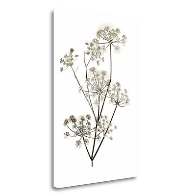 Tangletown Fine Art 'Garden Bloom - 12' Graphic Art Print on Wrapped Canvas; 28'' H x 19'' W
