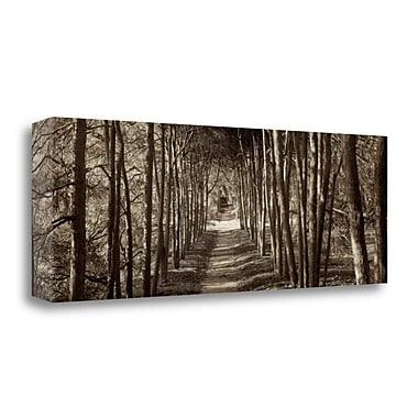Tangletown Fine Art 'Hampton Gates Promenade - 2' Photographic Print on Wrapped Canvas