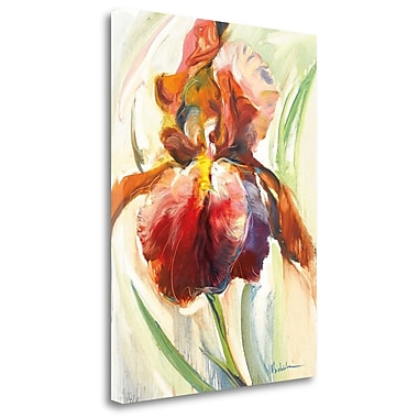 Tangletown Fine Art 'Colors of Iris II' Print on Wrapped Canvas; 23'' H x 18'' W