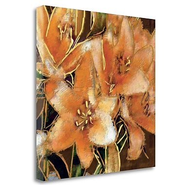 Tangletown Fine Art 'Apricot Dream I' Print on Wrapped Canvas; 30'' H x 30'' W