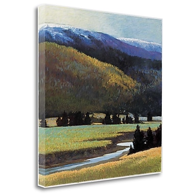 Tangletown Fine Art 'Foothills' Print on Wrapped Canvas; 35'' H x 35'' W