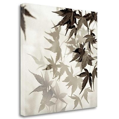 Tangletown Fine Art 'Florison - 57' Graphic Art Print on Wrapped Canvas; 35'' H x 35'' W