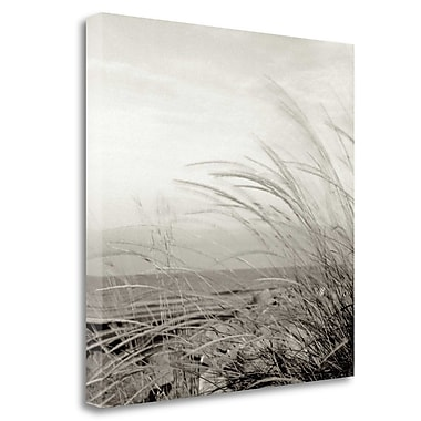 Tangletown Fine Art 'Tuscan Coast Dunes - 1' Photographic Print on Wrapped Canvas; 25'' H x 25'' W