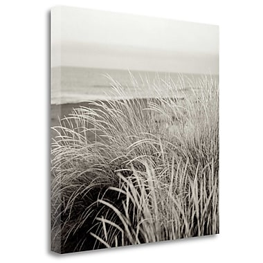 Tangletown Fine Art 'Tuscan Coast Dunes - 2' Graphic Art Print on Wrapped Canvas; 30'' H x 30'' W