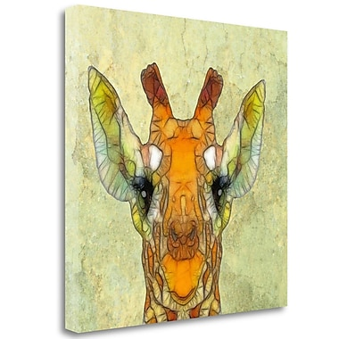 Tangletown Fine Art 'Abstract Giraffe Calf' Graphic Art Print on Wrapped Canvas; 25'' H x 25'' W