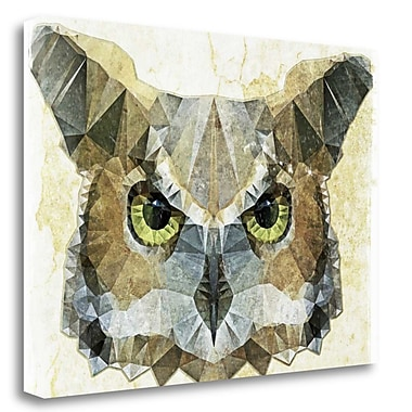 Tangletown Fine Art 'Abstract Owl' Graphic Art Print on Wrapped Canvas; 17'' H x 24'' W