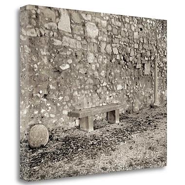 Tangletown Fine Art 'Banc de Jardin - 87' Photographic Print on Wrapped Canvas; 18'' H x 22'' W