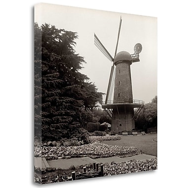 Tangletown Fine Art 'Golden Gate Park - 7' Photographic Print on Wrapped Canvas; 35'' H x 35'' W
