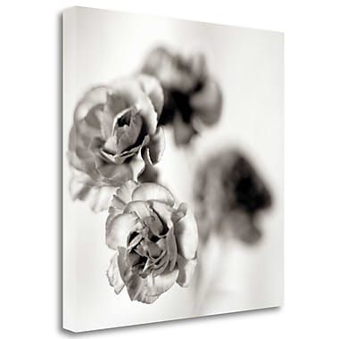 Tangletown Fine Art 'Florison - 39' Graphic Art Print on Wrapped Canvas; 25'' H x 25'' W