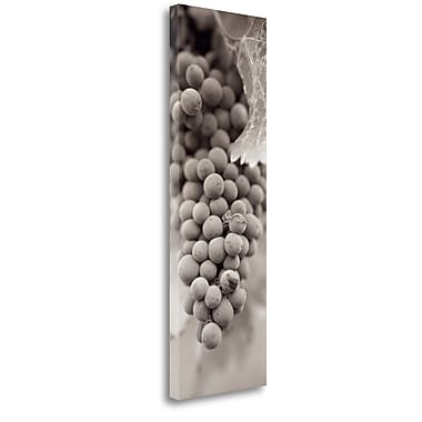 Tangletown Fine Art 'Grapes Pano - 1' Graphic Art Print on Wrapped Canvas; 39'' H x 13'' W
