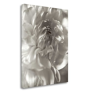 Tangletown Fine Art 'Florison - 18' Graphic Art Print on Wrapped Canvas; 45'' H x 35'' W