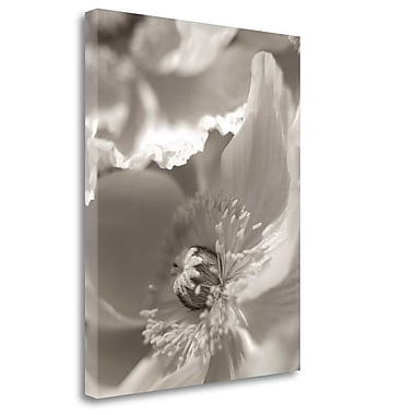 Tangletown Fine Art 'Florison - 7' Graphic Art Print on Wrapped Canvas; 36'' H x 28'' W
