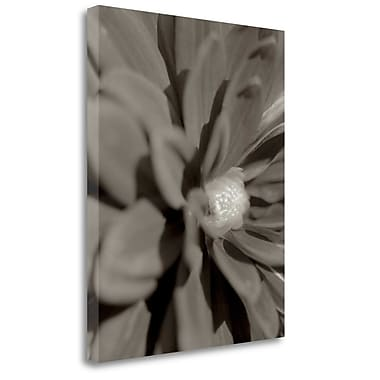 Tangletown Fine Art 'Florison - 6' Graphic Art Print on Wrapped Canvas; 27'' H x 21'' W