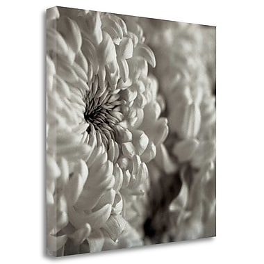 Tangletown Fine Art 'Florison - 46' Graphic Art Print on Wrapped Canvas; 20'' H x 20'' W