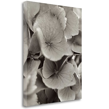 Tangletown Fine Art 'Florison - 1' Graphic Art Print on Wrapped Canvas; 45'' H x 35'' W