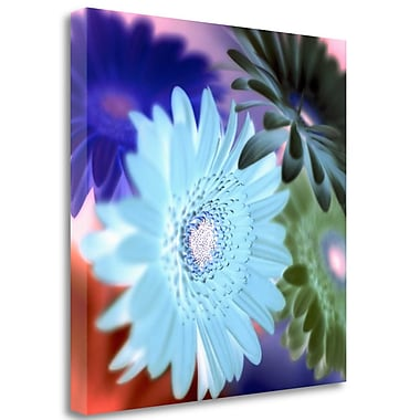 Tangletown Fine Art 'Floral Color - 1' Graphic Art Print on Wrapped Canvas; 30'' H x 30'' W