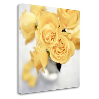 Tangletown Fine Art 'Floral Color - 21' Graphic Art Print on Wrapped Canvas; 25'' H x 25'' W