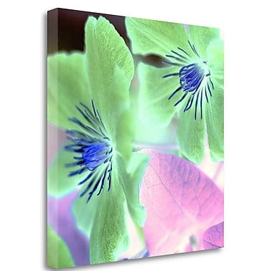 Tangletown Fine Art 'Floral Color - 13' Graphic Art Print on Wrapped Canvas; 25'' H x 25'' W