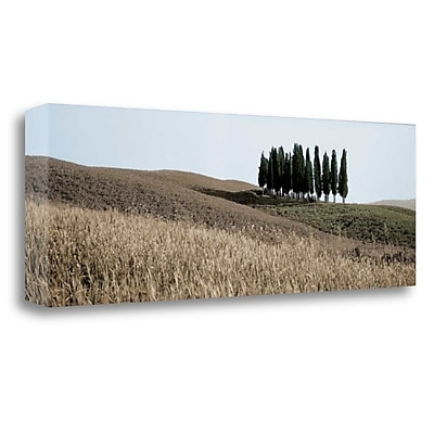 Tangletown Fine Art 'Val de Orcia Pano - 3' Photographic Print on Wrapped Canvas; 12'' H x 34'' W