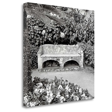 Tangletown Fine Art 'Campagnia - 1' Photographic Print on Wrapped Canvas; 35'' H x 35'' W