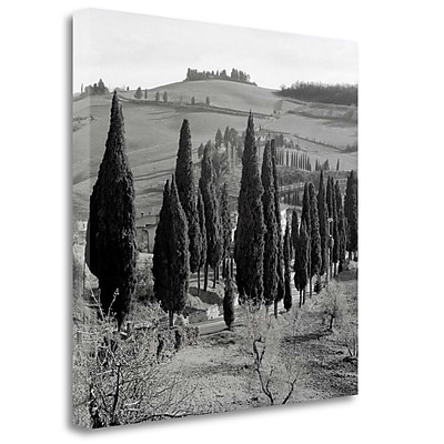 Tangletown Fine Art 'Tuscany - 4' Photographic Print on Wrapped Canvas; 20'' H x 20'' W