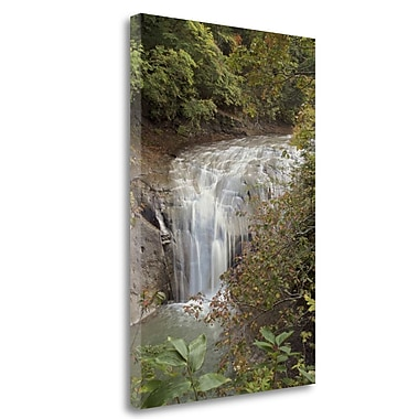 Tangletown Fine Art 'Hokkaido Waterfall - 2' Photographic Print on Wrapped Canvas; 32'' H x 21'' W
