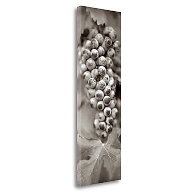 Tangletown Fine Art 'Grapes Pano - 6' Graphic Art Print on Wrapped Canvas; 39'' H x 13'' W