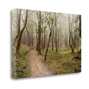 Tangletown Fine Art 'Oak Tree - 21' Photographic Print on Wrapped Canvas; 21'' H x 32'' W