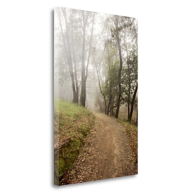 Tangletown Fine Art 'Oak Tree - 19' Photographic Print on Wrapped Canvas; 32'' H x 21'' W